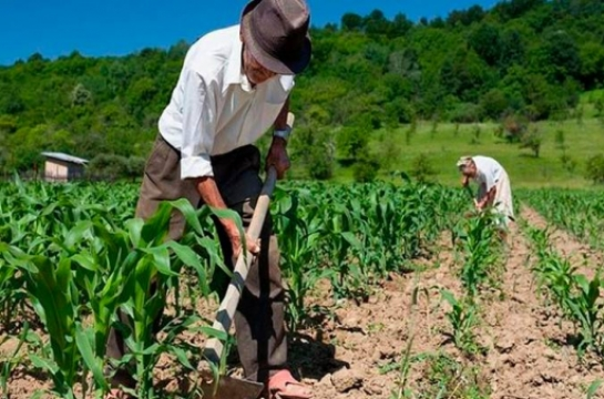 Chamada pública da agricultura familiar